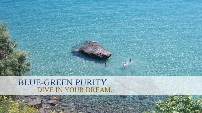 Blue-Green Purity